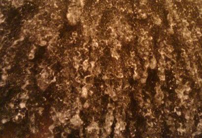 texture shot 4b hair